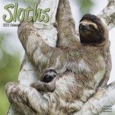 Luiaard / Sloths Kalender 2021
