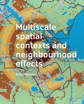Multiscale spatial contexts and neighbourhood effects