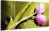 Glasschilderij Tulp | Roze, Groen, Wit | 160x80cm 4Luik | Foto print op Glas |  F003719