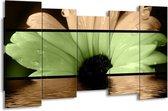 Canvas schilderij Bloem   Bruin, Groen, Zwart   150x80cm 5Luik