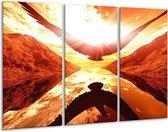 Canvas schilderij Vogel | Rood, Geel, Oranje | 120x80cm 3Luik