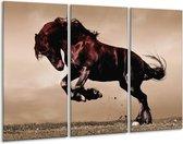 Canvas schilderij Paard | Bruin, Grijs, Zwart | 120x80cm 3Luik