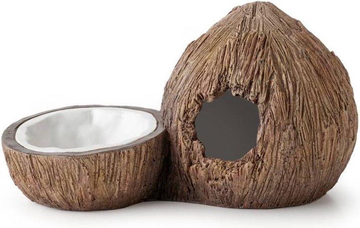 Tiki kokosnoot schuilgrot & waterschaal - Exo Terra