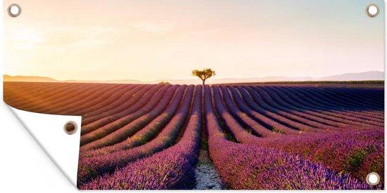 Afbeelding van een paars lavendelveld in het Franse Valensole tuinposter 80x40 cm - klein - Tuindoek / Buitencanvas / Schilderijen voor buiten (tuin decoratie)