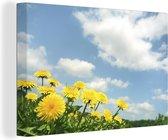 Paardenbloem bloemen 180x120 cm - Foto print op Canvas schilderij (Wanddecoratie woonkamer / slaapkamer) XXL / Groot formaat!