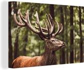 Portret van een hert in het bos Canvas 60x40 cm - Foto print op Canvas schilderij (Wanddecoratie woonkamer / slaapkamer) / Wilde dieren Canvas Schilderijen