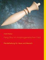 Feng Shui im morphogenetischen Feld