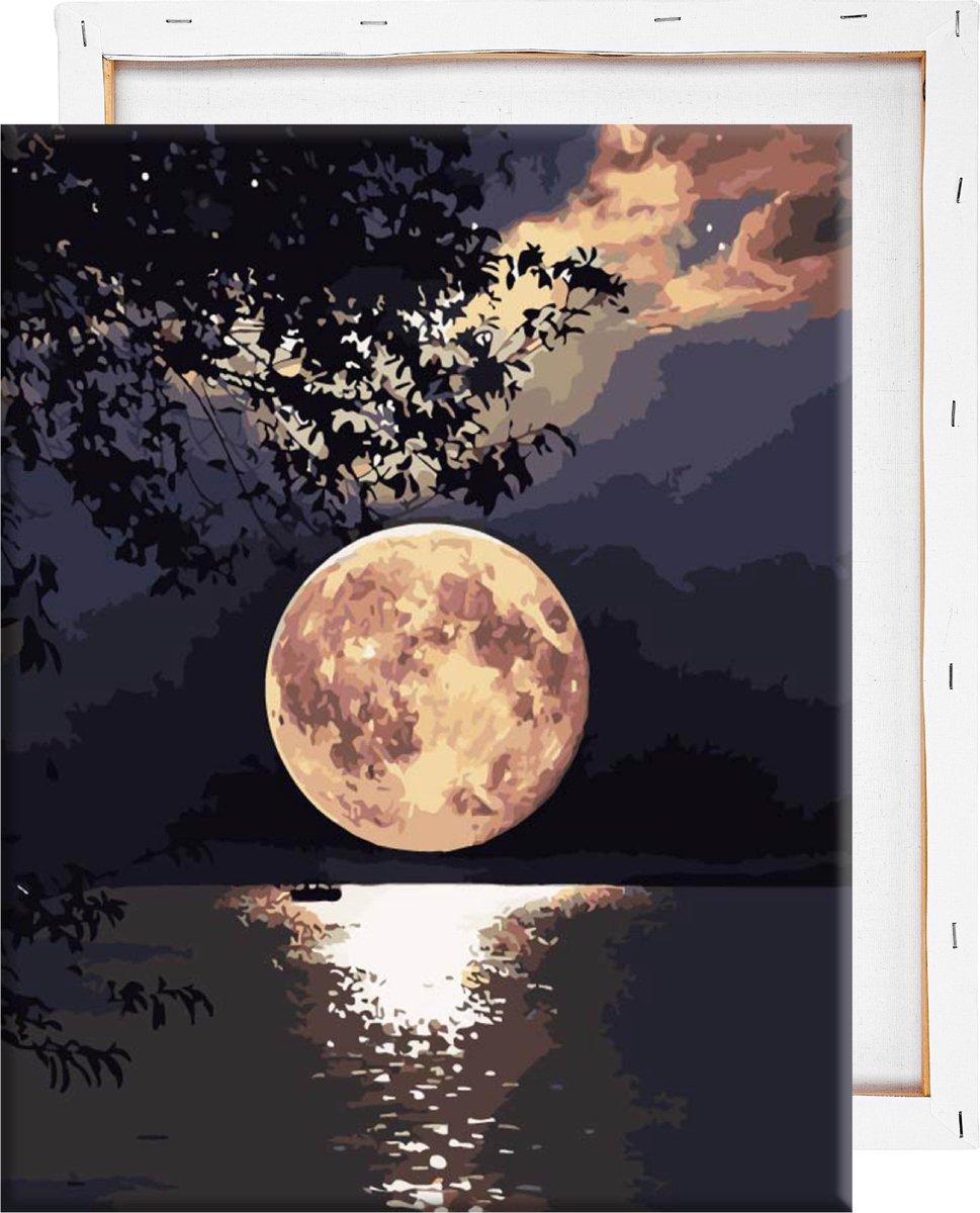 Schilderen Op Nummer Volwassenen - Volle maan - Met Frame - 40x50 cm