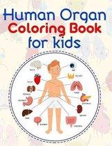 Human Organ Coloring Book For Kids