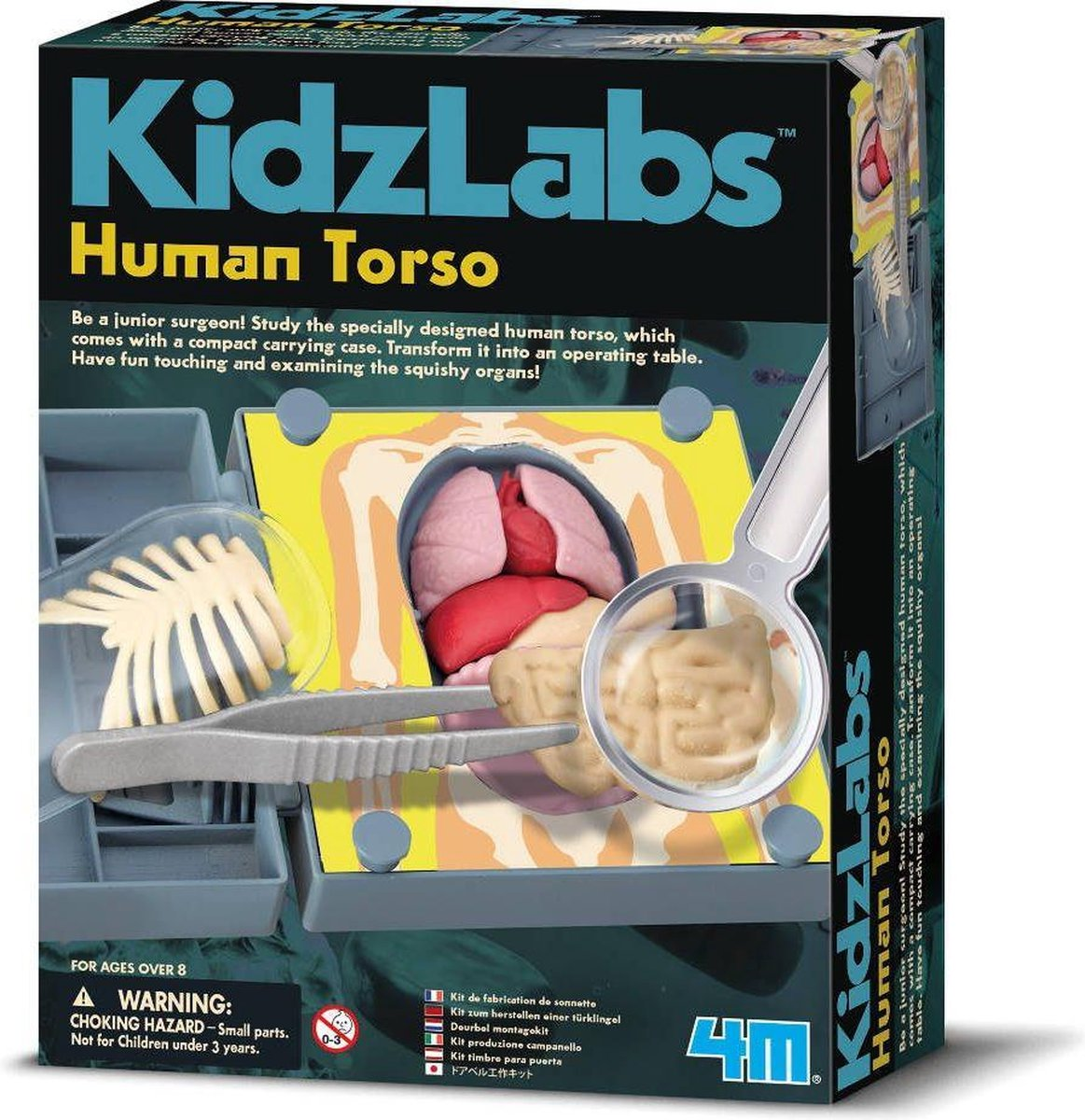 4m Kidslabs Human Science: Anatomie Romp