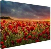 Klaprozen veld bij zonsondergang Canvas 120x80 cm - Foto print op Canvas schilderij (Wanddecoratie woonkamer / slaapkamer) / Bloemen Canvas Schilderijen