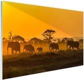 Kudde olifanten bij zonsopkomst Glas 180x120 cm - Foto print op Glas (Plexiglas wanddecoratie) XXL / Groot formaat!