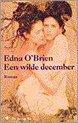 Een Wilde December