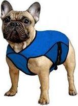 Aqua Coolkeeper Jacket - Pacific Blue - M