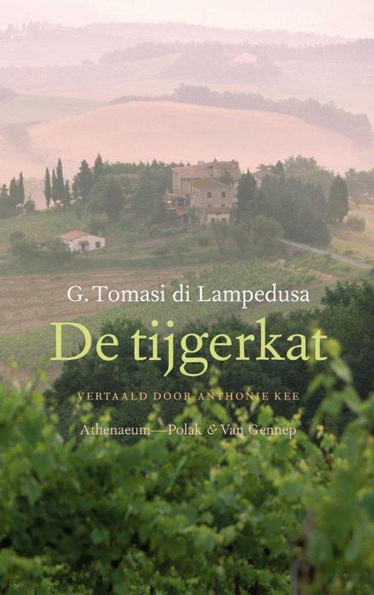 De tijgerkat - Giuseppe Tomasi di Lampedusa | Readingchampions.org.uk