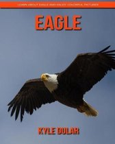 Eagle! Learn about Eagle and Enjoy Colorful Pictures