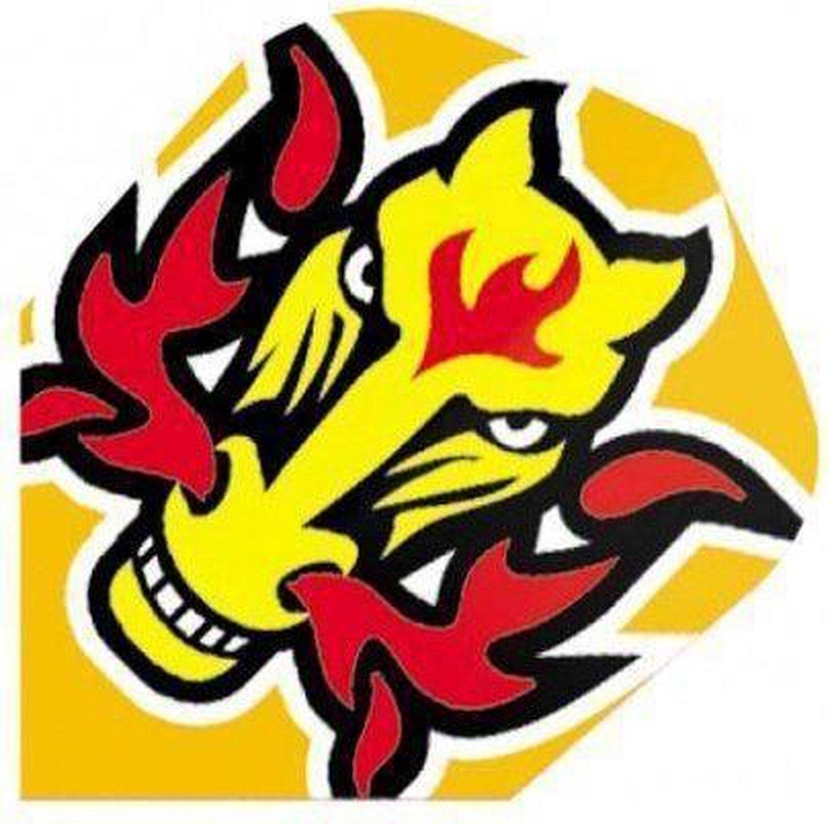 Harrows darts Flight 2019 quadro flaming horse