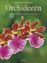 Praktisch handboek orchideeen