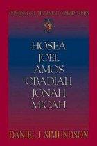 Abingdon Old Testament Commentaries: Hosea, Joel, Amos, Obadiah, Jonah, Micah