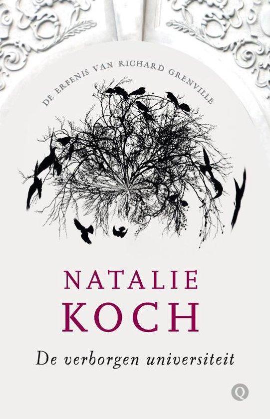 De verborgen universiteit 1 - De erfenis van Richard Grenville - Natalie Koch | Readingchampions.org.uk