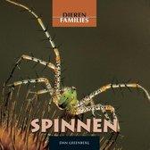 Dierenfamilies - Spinnen