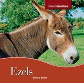 Dierenfamilies - Ezels