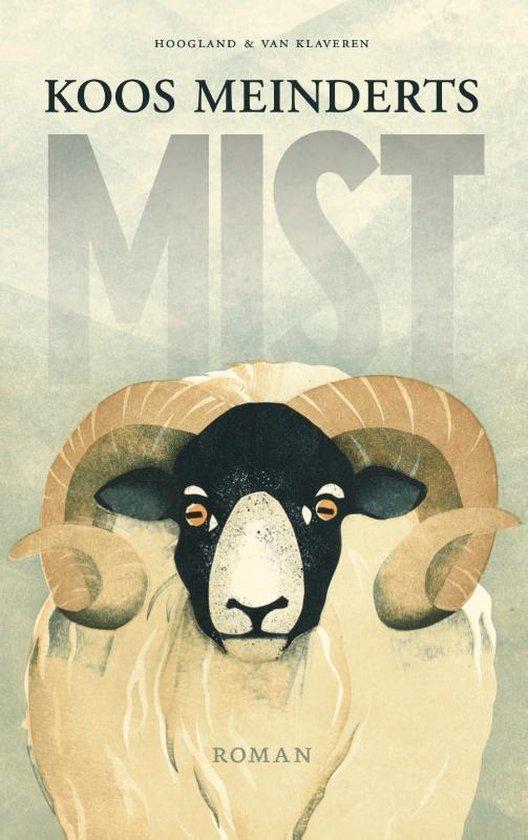 Mist - Koos Meinderts   Fthsonline.com