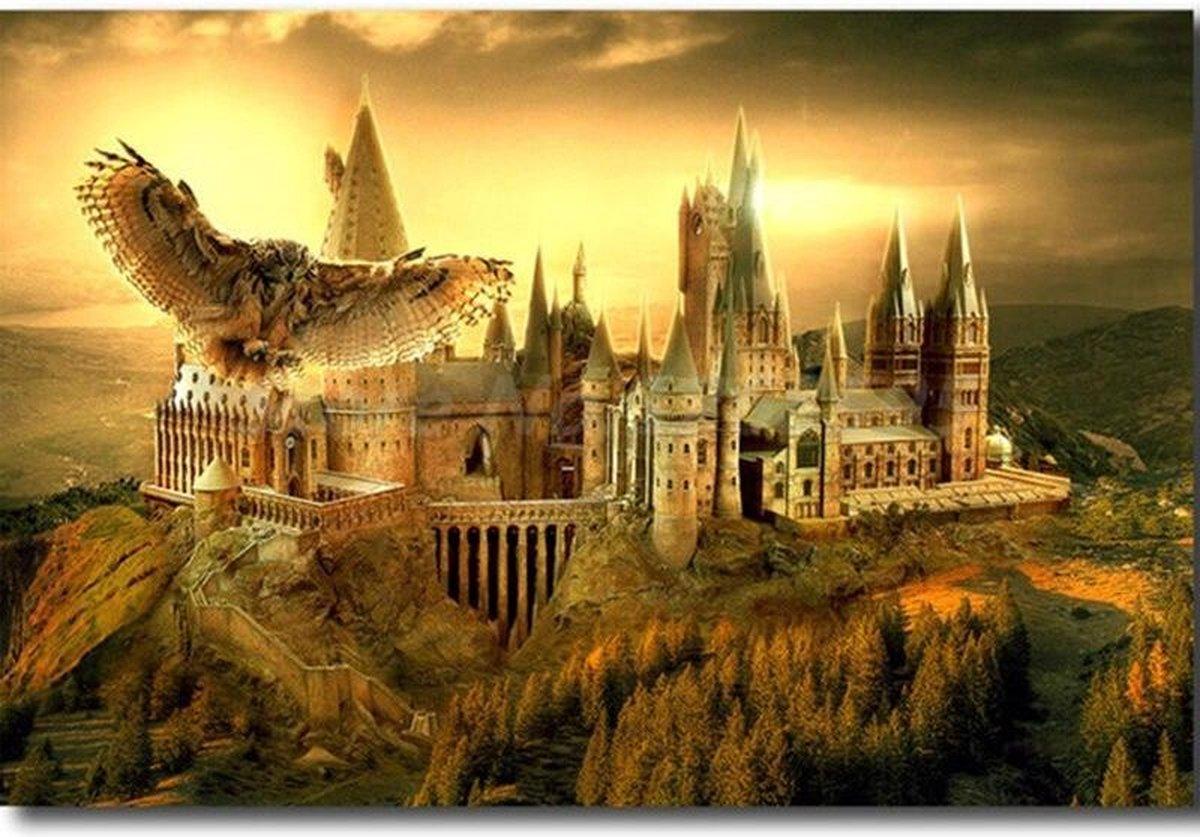 Premium Paintings - Hedwig met Zweinstein - Harry Potter - Diamond Painting Volwassenen - Pakket Volledig / Pakket Full - 30x40 - Moederdag cadeautje