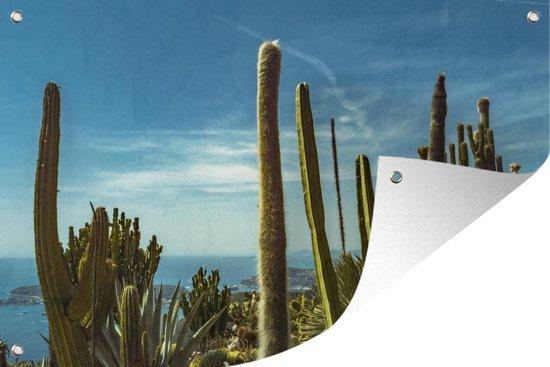 Tuinposter - Cactussen aan de kust van de Middellandse Zee - 180x120 cm - XXL