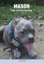 Mason the Ambassadog
