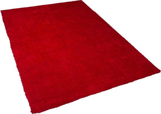 Beliani DEMRE - Vloerkleed - Rood - Polyester