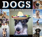 CAL 20 DOGS ON INSTAGRAM