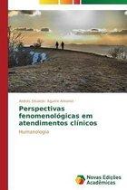 Perspectivas Fenomenologicas Em Atendimentos Clinicos