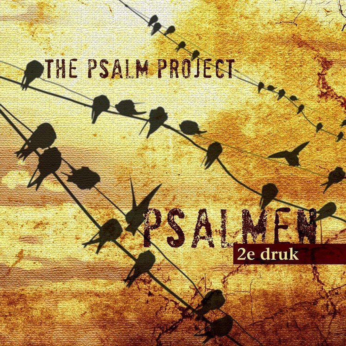 Psalmen - 2E Druk - Psalm project, the