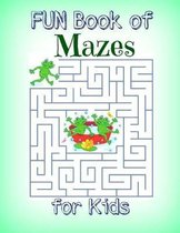 Fun Book of Mazes for Kids
