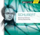 Schubert: Premium Conposers Vol. 11