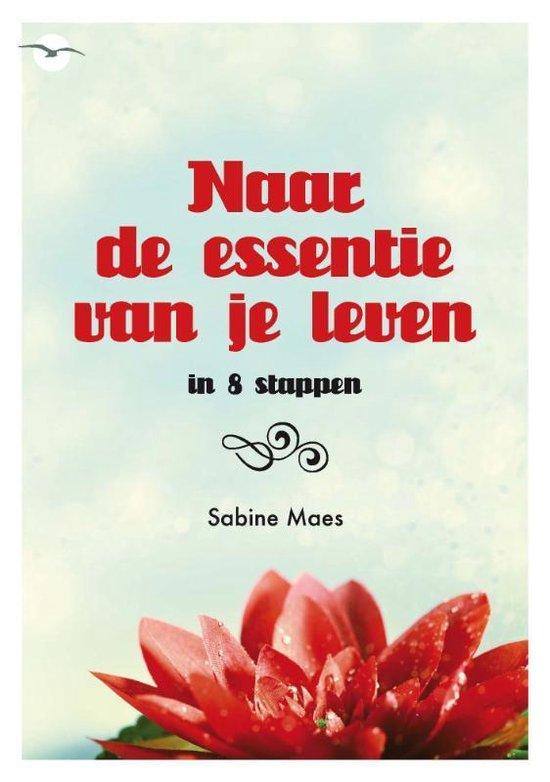 Naar de essentie van je leven - Sabine Maes |