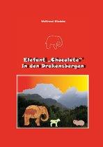 """Elefant """"Chocolate"""" in den Drakensbergen"""