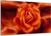 Canvas schilderij Bloem | Rood, Zwart, Oranje | 120x70cm 1Luik