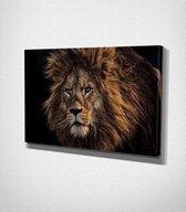 Lion Canvas | 40x60 cm