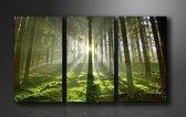 Foto Prent Canvas Schilderijen (Wanddecoratie woonkamer / slaapkamer) - Schilderij Bos Groen - 160 x 90 cm Drieluik