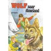 Wolf naar Ameland