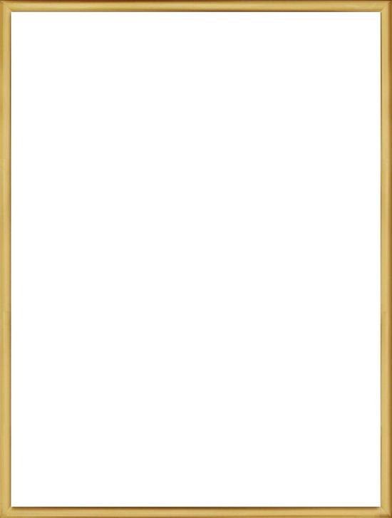 Homedecoration Almelo – Fotolijst – Fotomaat – 59 x 66 cm – Vintage Goud