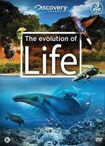 Special Interest - Evolution Of Life