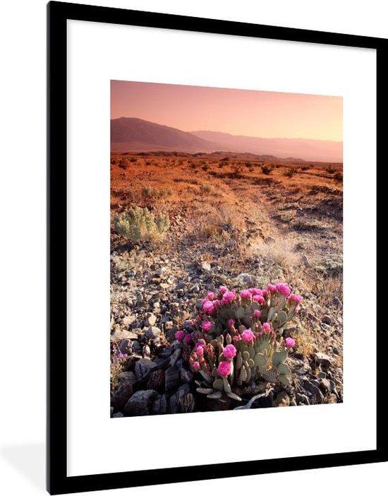 Poster met lijst Nationaal park Death Valley - Een cactus in de Death Valley nationaal park in Californië fotolijst zwart met witte passe-partout - fotolijst zwart - 60x80 cm - Poster met lijst