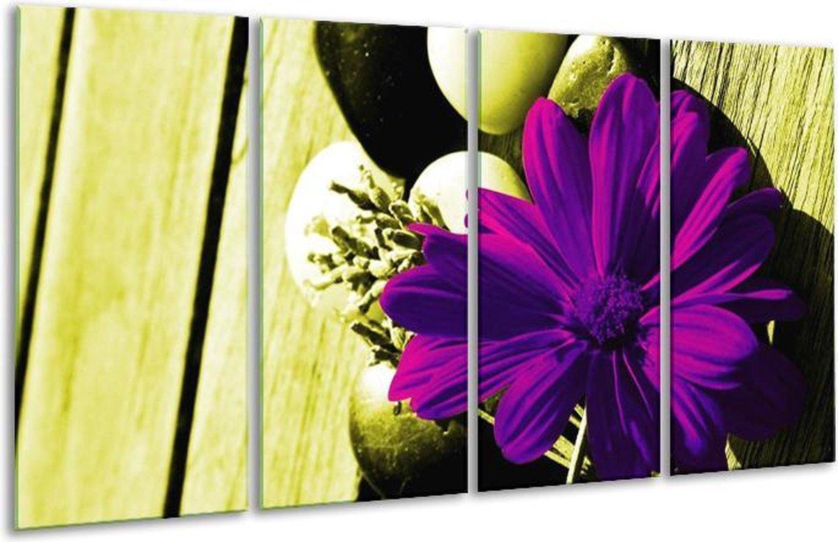 Glasschilderij Bloem   Paars, Groen, Wit   160x80cm 4Luik   Foto print op Glas    F003736