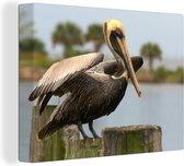 Een bruine pelikaan zit op een paal in het water 160x120 cm - Foto print op Canvas schilderij (Wanddecoratie woonkamer / slaapkamer) XXL / Groot formaat!