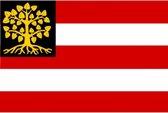 Vlag Den Bosch 's-Hertogenbosch