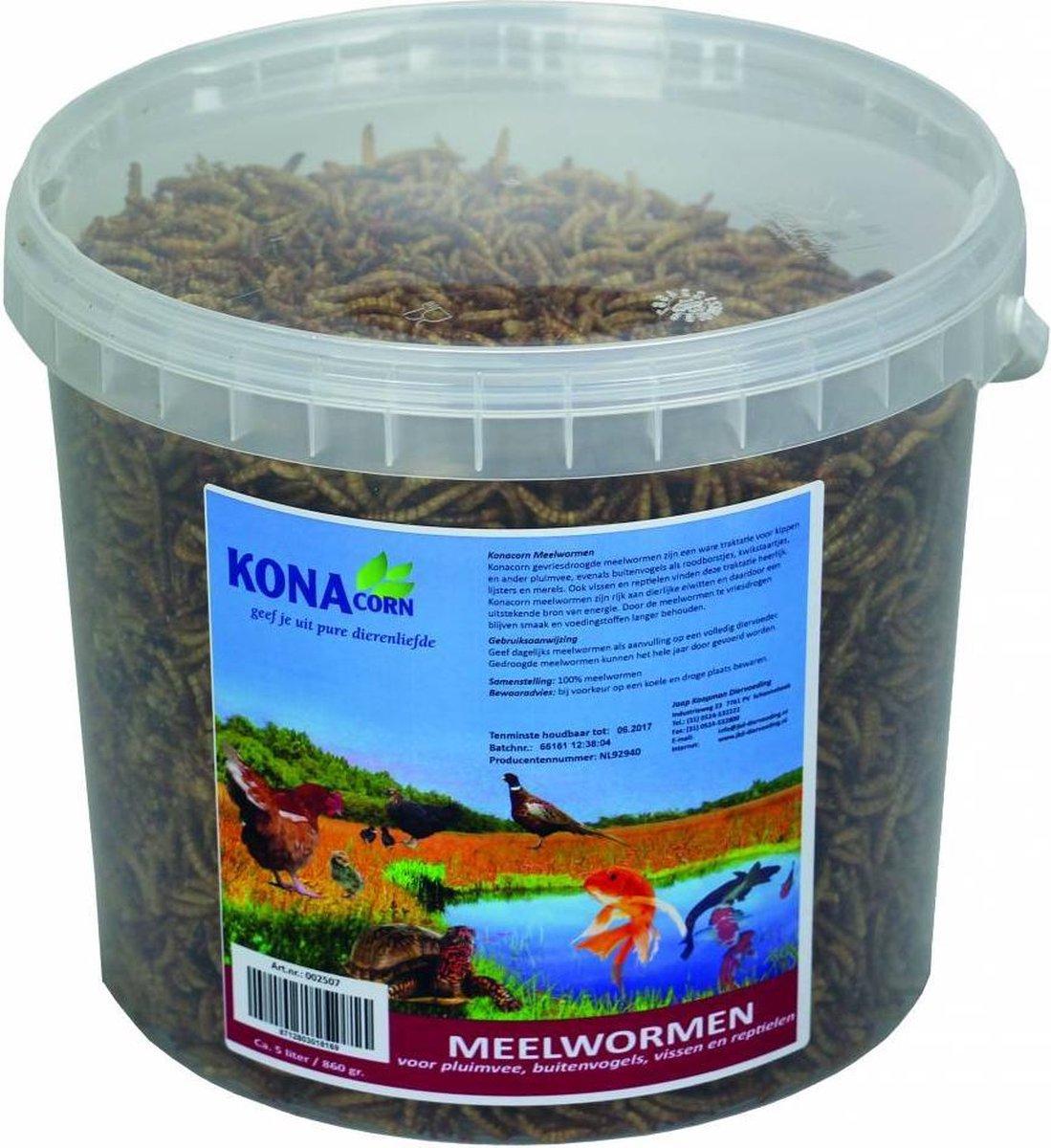 Meelwormen 5 L