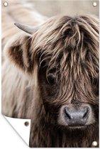 Tuindecoratie Schotse Hooglander - Dieren - Hoorn - 40x60 cm - Tuinposter